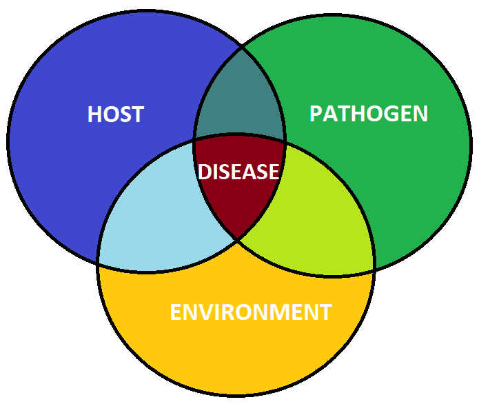 Module Two   Disease Concepts and Diagnostics